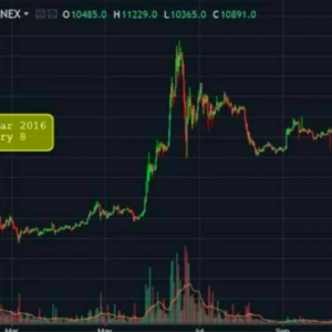 CHINESE NEW YEAR AND BITCOIN PRICE HISTORY: IS BITCOIN GOING TO FALL?