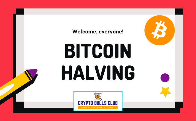 What is Bitcoin Halving? Bitcoin Price History with Halving