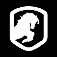 DeRace : NFT Horse Racing Game