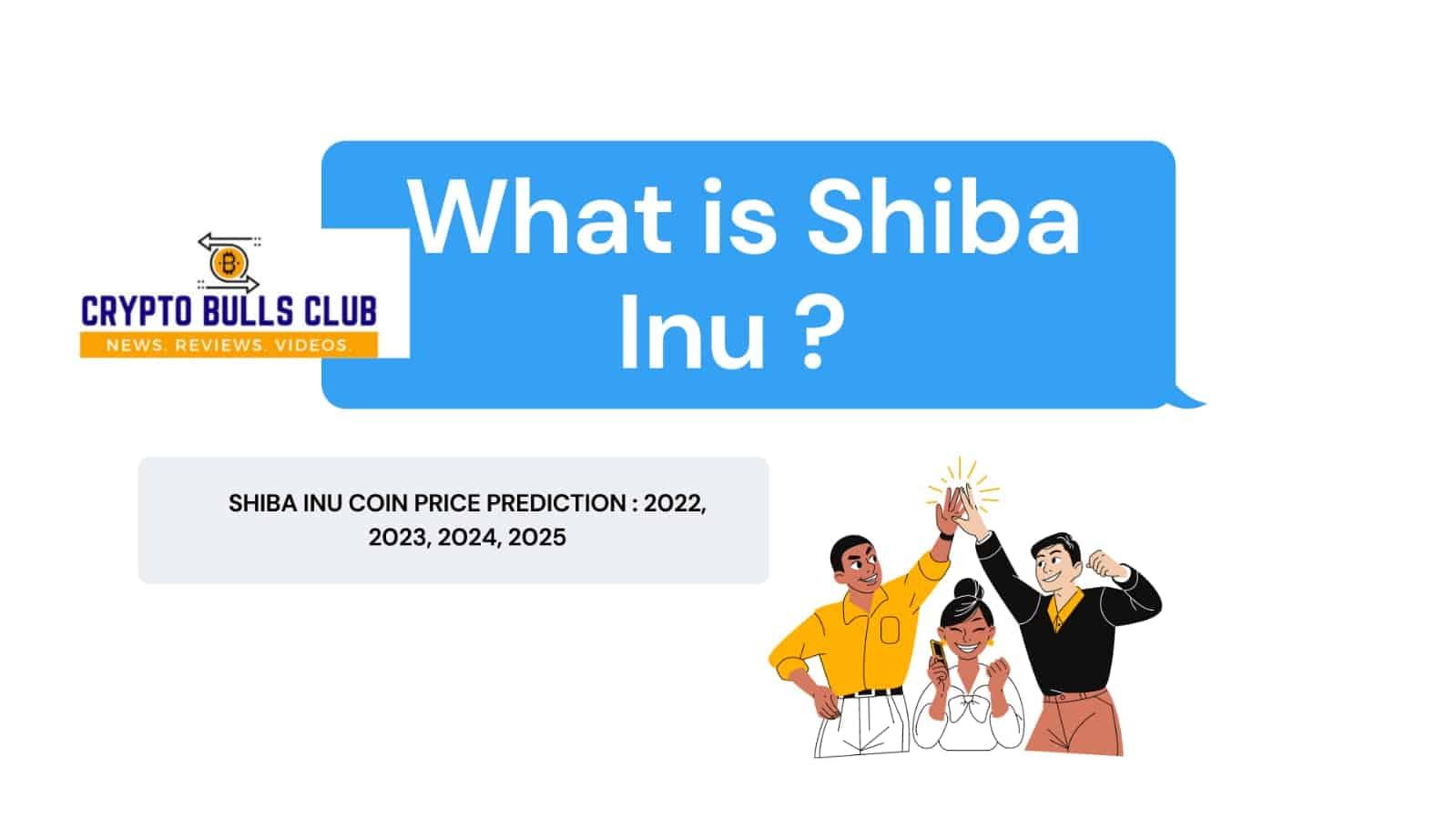 What is Shiba Inu ?